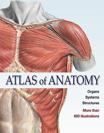 Resim Atlas of Anatomy