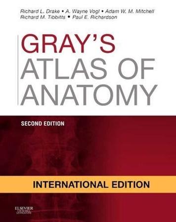 Resim Gray's Atlas Of Anatomy 2e