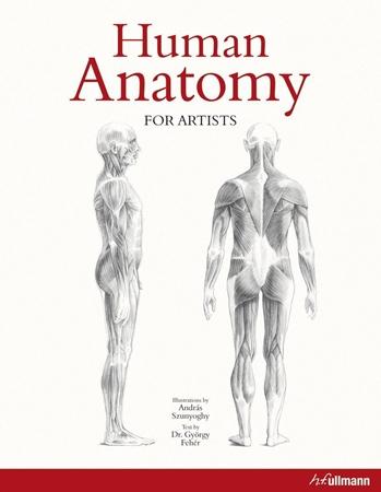 Resim Human Anatomy For Artists