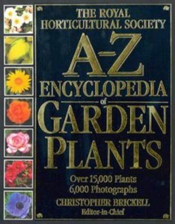 Resim RHS A-Z Encyclopedia of Garden Plants
