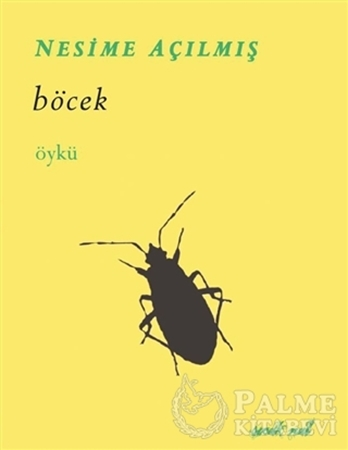 Resim Böcek