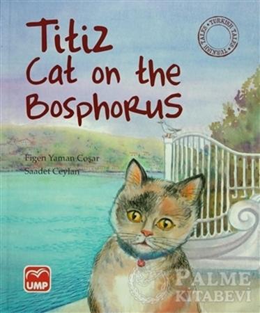 Resim Titiz Cat on the Bosphorus