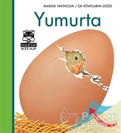 Resim Yumurta