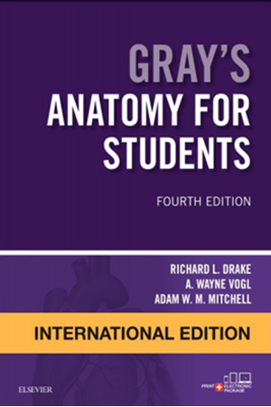 Resim Gray's Anatomy for Students International Edition