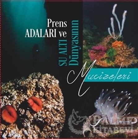 Resim Prens Adaları ve Su Altı Dünyasının Mucizeleri