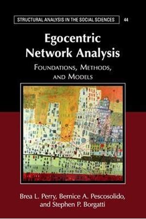 Resim Egocentric Network Analysis