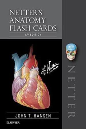 Resim Netter's Anatomy Flash Cards 5e