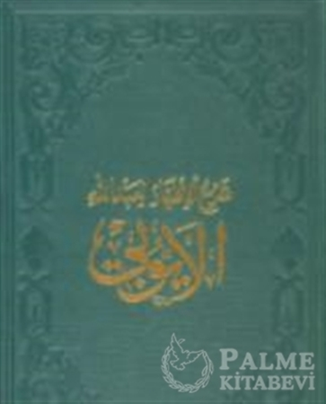 Resim El-Eyyubi