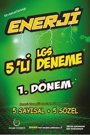 Resim Enerji LGS 1. Dönem 5'li Deneme