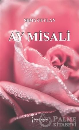 Resim Ay Misali
