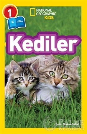 Resim Kediler