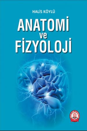 Resim Anatomi ve Fizyoloji